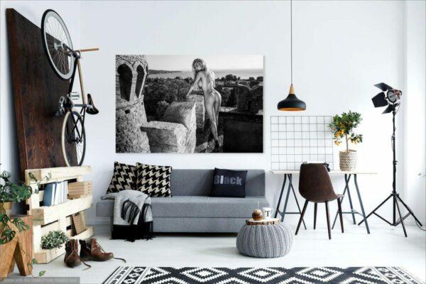 Künstlerische Aktfoto A186 Premium Wandbild Poster Acryl PlumaArt nackte Frau, Wandbild PlumaArt