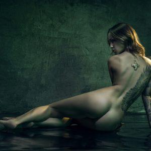 Acrylglas 3mm starke   Künstlerische Aktfoto A165 Premium Wandbild Poster Acryl PlumaArt nackte Frau Künstler: Aleksandr Lishchi