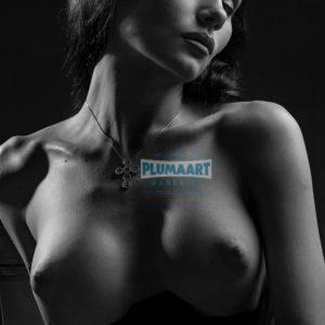 Acrylglas 3mm starke   Künstlerische exklusiv schwarz-weiß Aktfoto Poster nude Acrylglasbild A109 Künstler: Aleksandr Lishchinsk